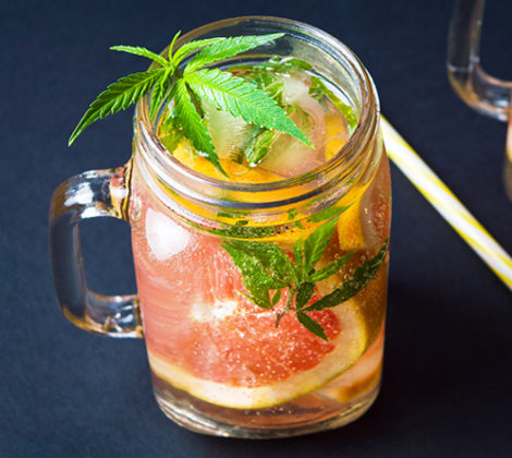 Weedka: Cannabis Wodka aus Amsterdam
