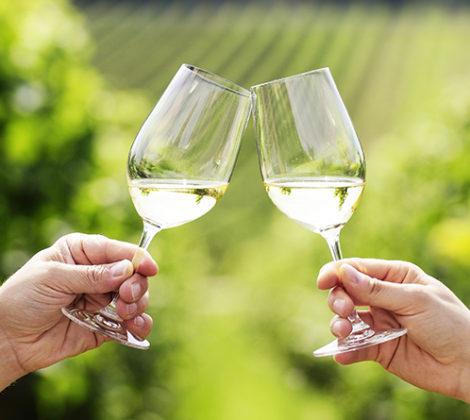 Pinot Grigio und Sauvignon Blanc: das sollten Sie wissen